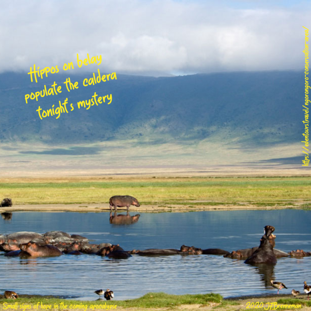 panorama view of Ngorongoro Crater, with hippos in the water in the foreground, and steep walls of the caldera in the background; text overlaid on image.