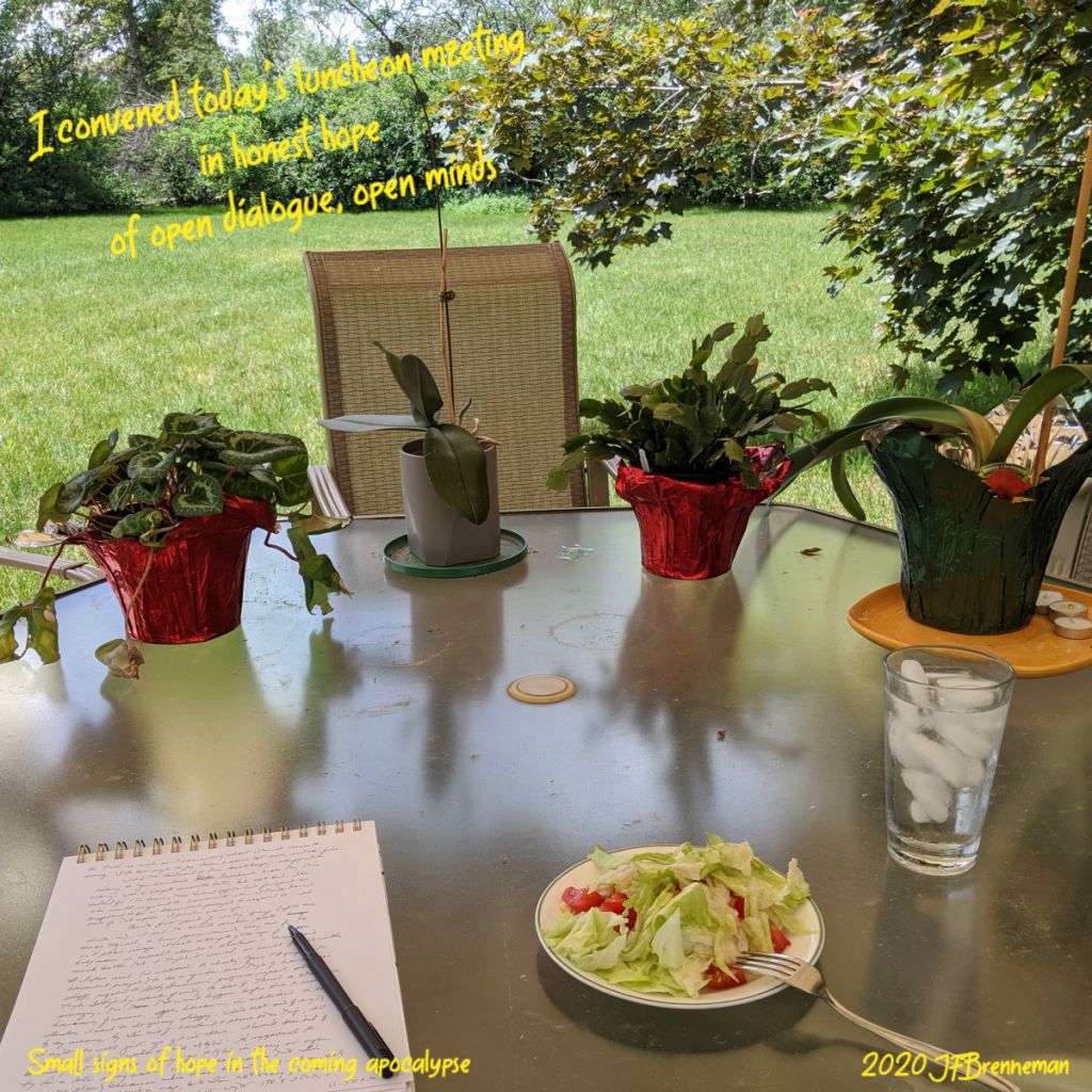 potted plants on far side of round picnic table, notepad, salad, ice water on near side; text overlaid on image