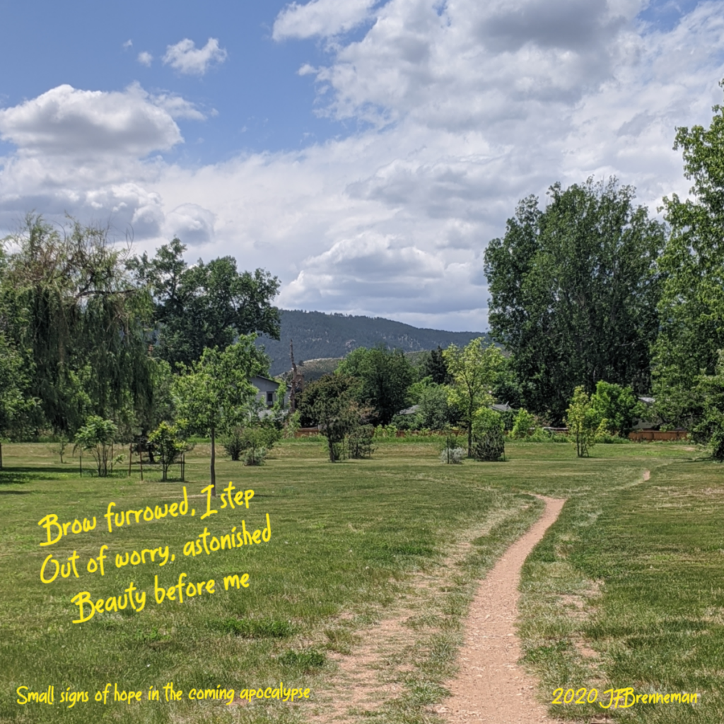 dirt trail curving through green meadow and trees toward mountain; bright clouds and blue sky; text overlaid on image