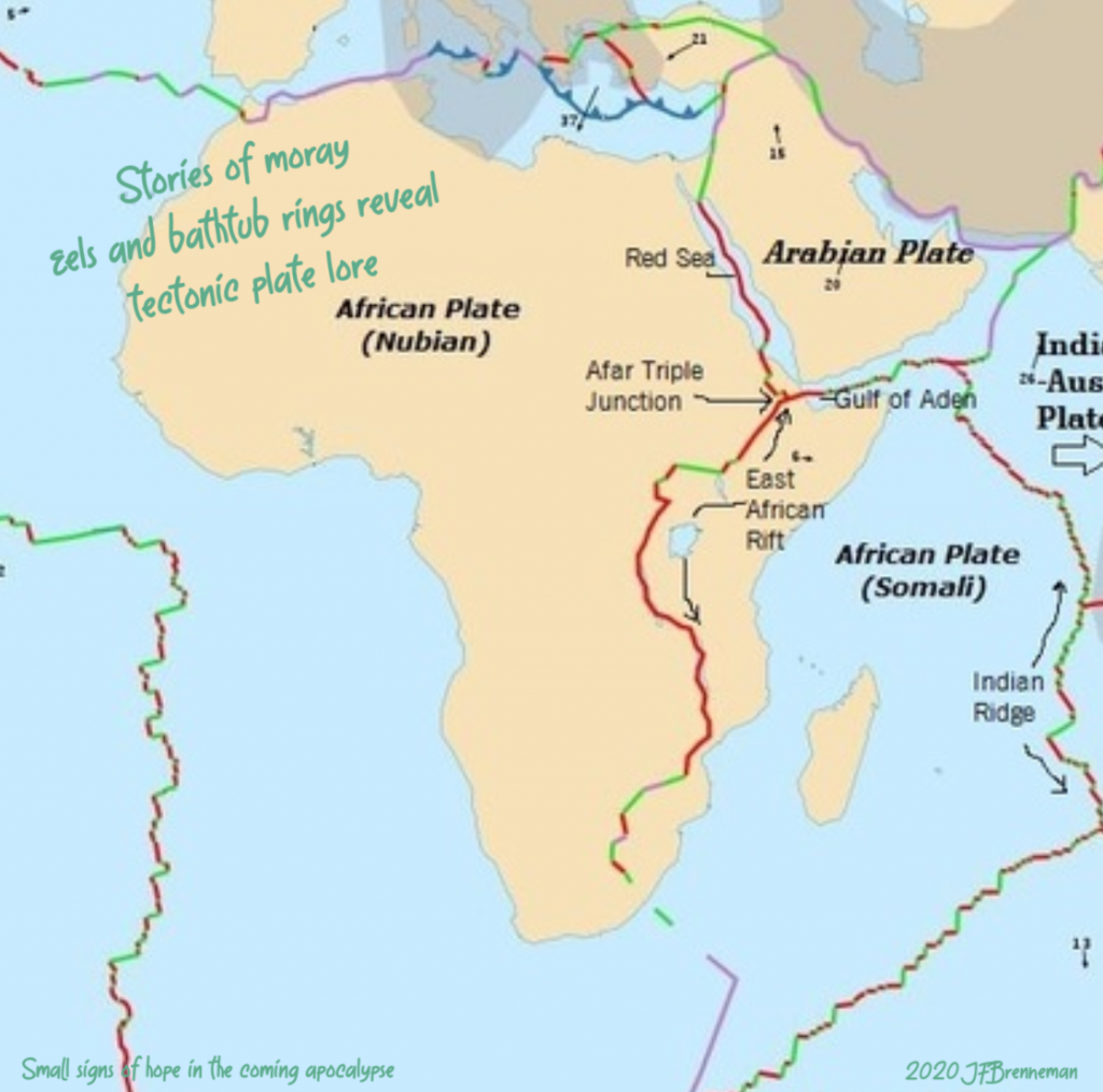 illustration of African, Arabian, and Somali tectonic plates; text overlaid on image