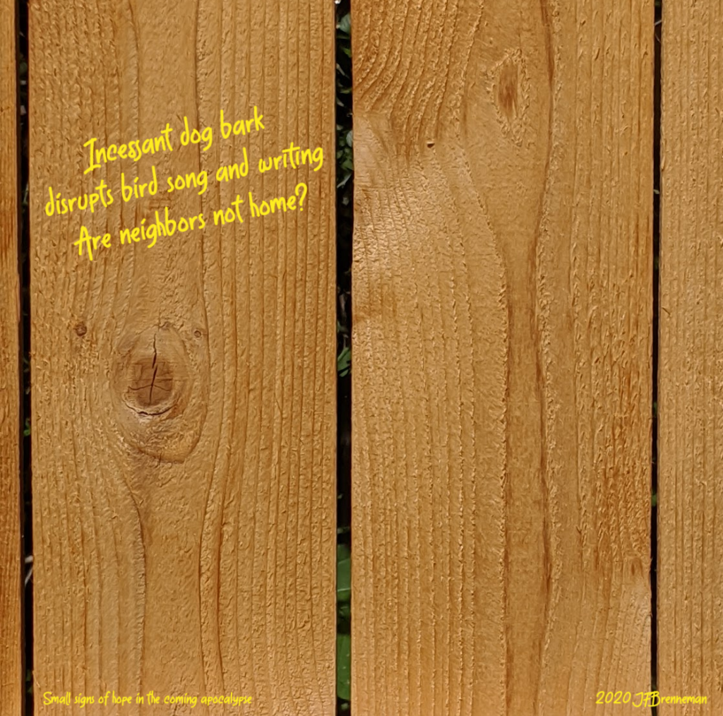 close-up of unpainted wood fence pickets; text overlaid on image