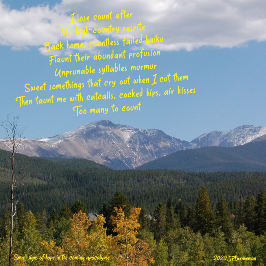 View of Colorado forest and mountain range on a clear autumn day; text overlaid on image