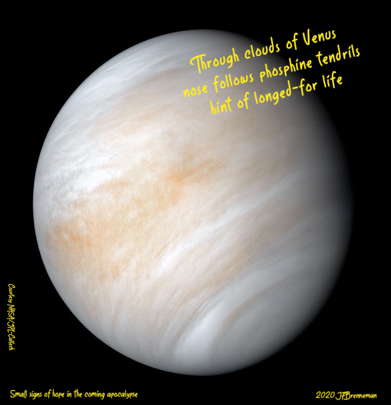 Image of Venus processed from archived Mariner 10 data by JPL engineer Kevin M. Gill, courtesy NASA/JPL-Caltech; text overlaid on image