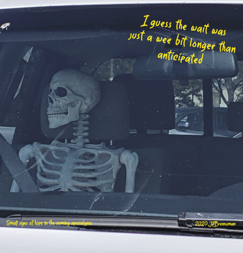 Skeleton in pick-up truck's passenger seat; text overlaid on image