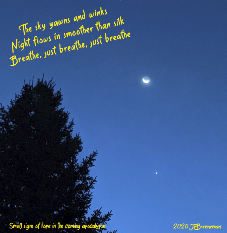Crescent moon above Venus in late twilight, framed on one side by tall evergreen; text overlaid on image