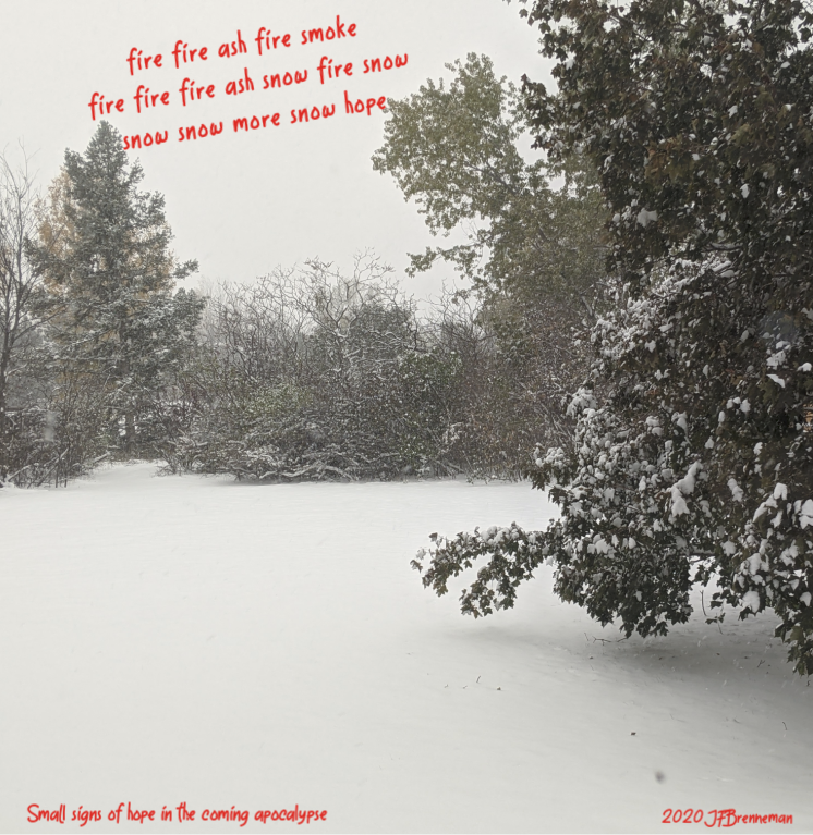 Steadily falling snow covers ground and trees; text overlaid on image