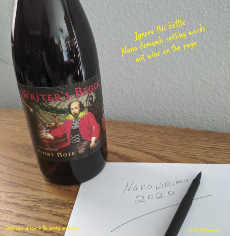 "Bottle of ""Writers Block"" red wine beside pen and ""Nanowrimo 2020"" written in longhand on writing paper; text overlaid on image."