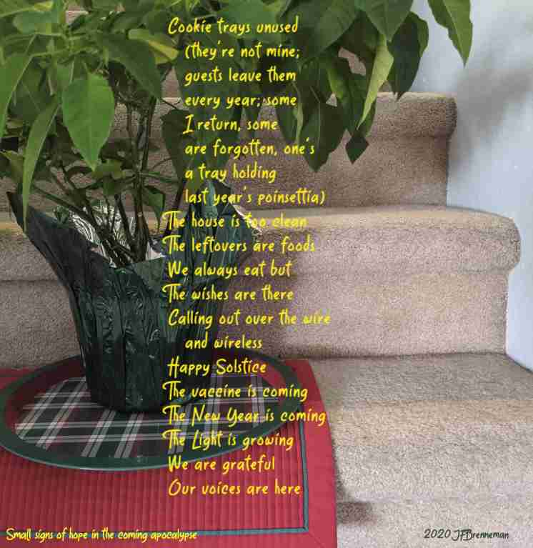 Poinsettia on red and green plaid cookie tray; text overlaid on image